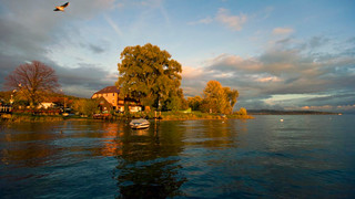 Autumn at Lake Constance