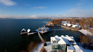 Pile dwellings at Lake Constance in winter