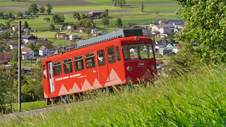 Panoramic view over Lake Constance from the Rheineck-Walzenhausen rack railway
