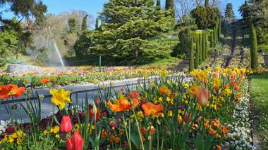 Mainau Blumenjahr 2021 Bodensee Tourismus