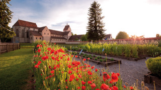 Minster St. Maria and Markus with herbs garden on the island of Reichenau at Lake Constance