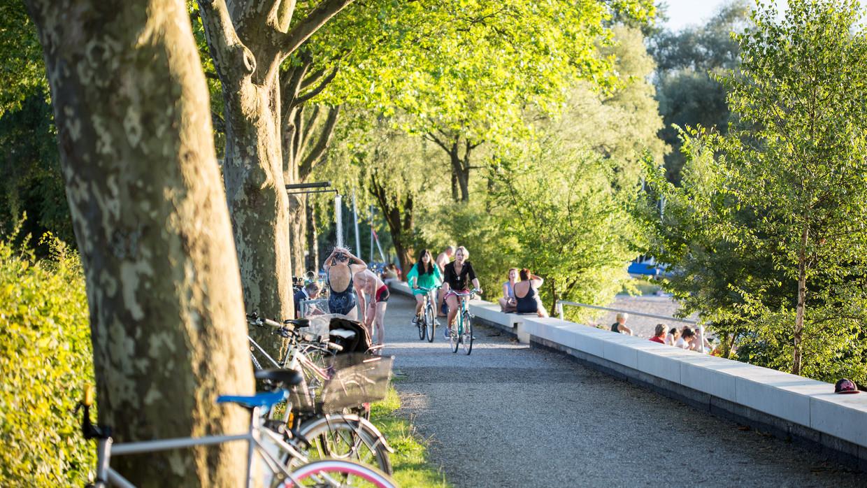 Cycling around Lake Constance: cycling holidays, cycling
