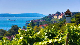 Vineyards in Meersburg at Lake Constance