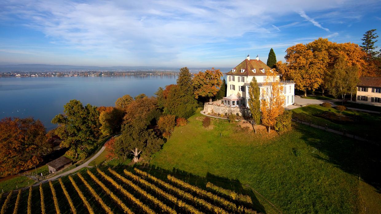 Burgen Amp Schl 246 Sser Am Bodensee Barock Ruinen Geschichte