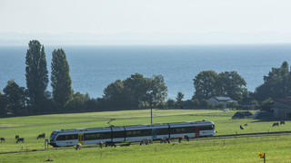 Thurbo Train with a view on Lake Constance | © Bodensee Ticket