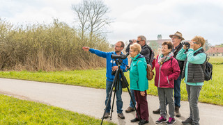 Birdwatching at Federsee  | © NABU-Naturschutzzentrum Federsee