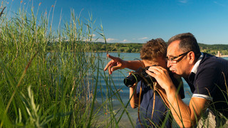 Birdwatching at the Peninsula Mettnau  | © REGIO KBH, Fotograf: Fotostudio Kasper